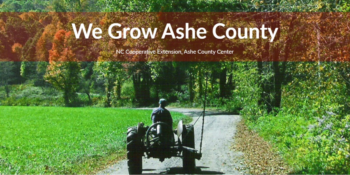 We Grow Ashe County flyer image