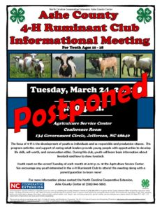 Cover photo for Postponed - The Ashe County 4-H Ruminant Club - Postponed